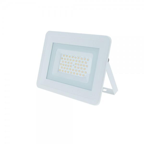 LED REFLEKTOR 100W SMD  IP65 CLASSIC LINE 2 LED reflektori FL5816 Led žarulje - LED rasvjeta